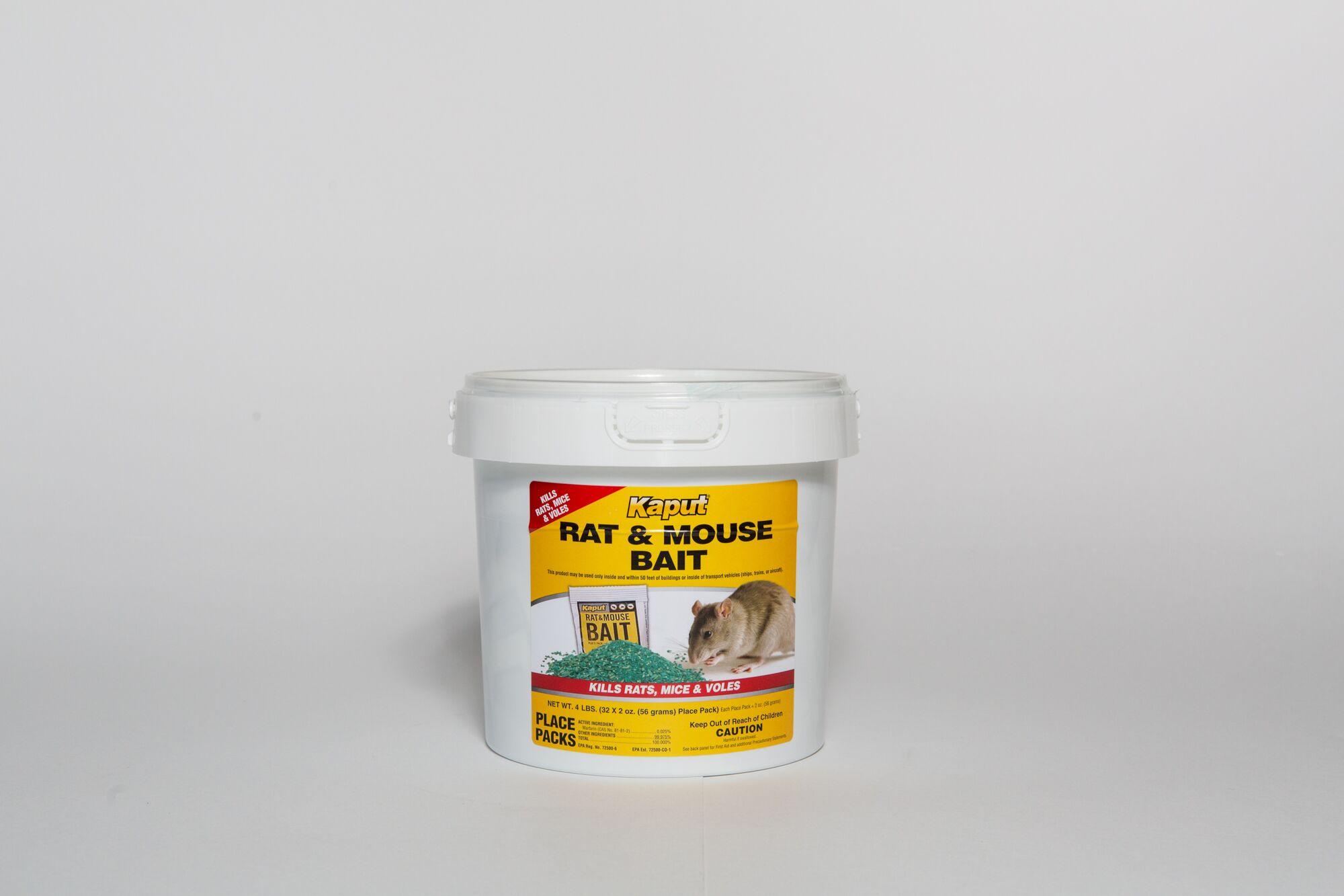 kaput rat and mouse