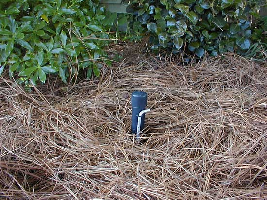 Mulch covered VOLE CONTROL Bait Station