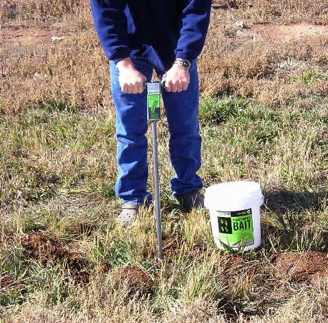 Kaput-D Gopher Bait Applicator being used to probe for tunnels and inject Kaput-D Gopher Bait.